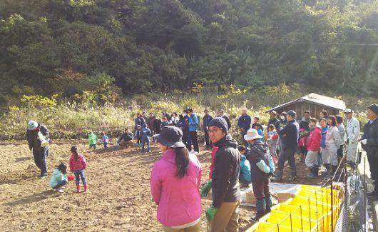 芋掘りイベント@七福芋本舗