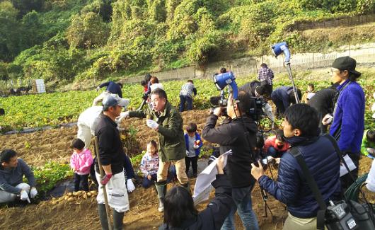 七福芋の収穫祭@七福芋本舗